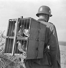 08 Soldado com pombos-correio